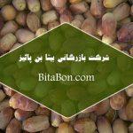 بازار خرما زاهدی