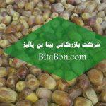 خرما زاهدی در بوشهر